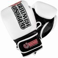 Triumph United Boxing Gloves Storm Trooper Pro White