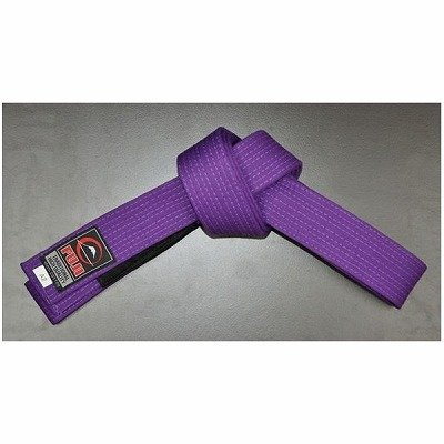 Photo1: Fuji Sports Jiu-jitsu Belt Purple