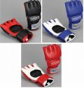 Martial World Pancrase Official Gloves