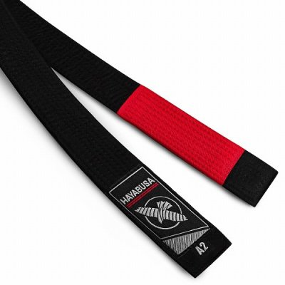 Photo1: Hayabusa Jiu Jitsu Belt Black