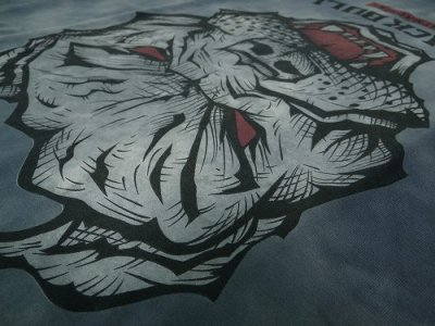 Photo3: BLACK BULL T-Shirts TIE DYE FF Dark Gray